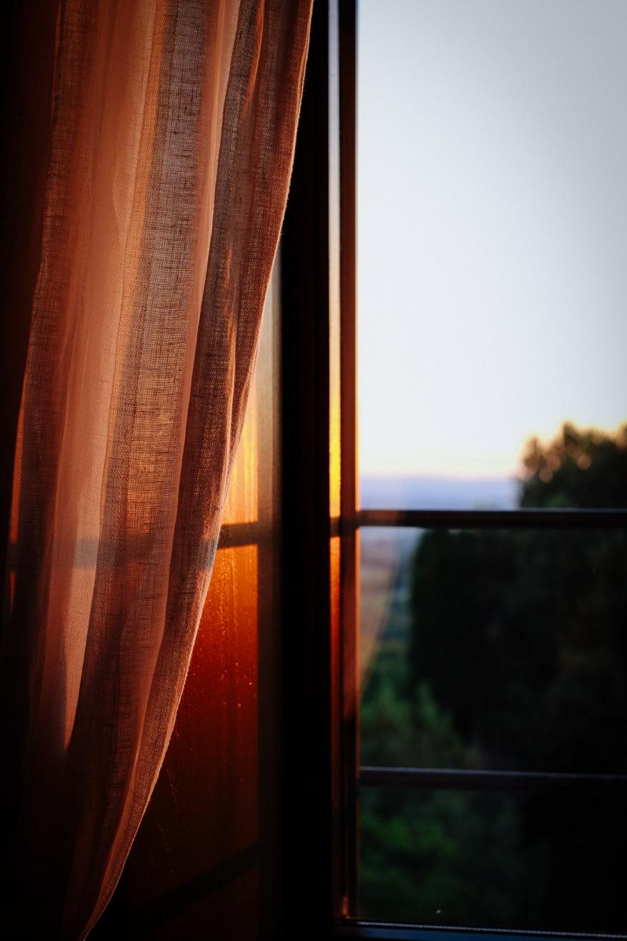Gardin i fönster. Foto.
