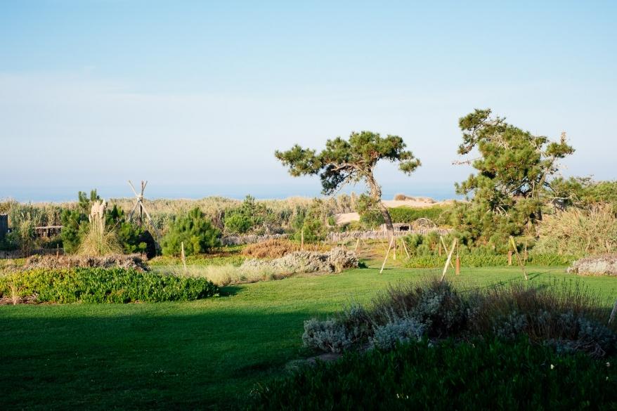 Garden. Photographer: Helena Bergqvist.