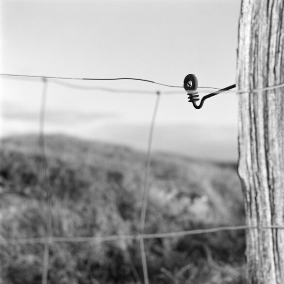 Fence. Photographer: Helena Bergqvist.